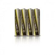 GOAL ZERO AAA BATTERIES & ADAPTOR PACK